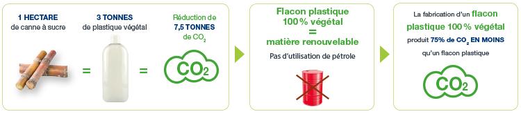 Les déchets de la canne à sucre recyclés en électricité