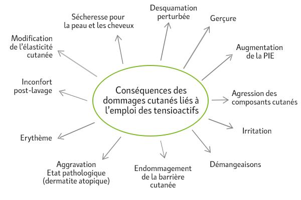 schema-dommages-tensioactifs