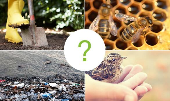 Comment agir pour la biodiversité ?